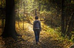 Einsame Frau, die auf Forest Path geht stockfotografie