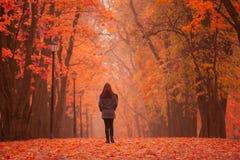 Einsame Frau, die in Park an einem nebeligen Herbsttag geht Lizenzfreie Stockfotografie