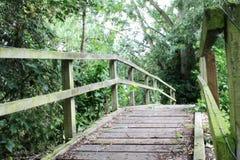 Einsame hölzerne Brücke Lizenzfreies Stockbild