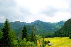 Einsame Hütte auf einer Bergwiese Lizenzfreie Stockfotos