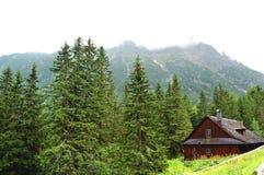 Einsame Hütte auf einer Bergwiese Stockbild