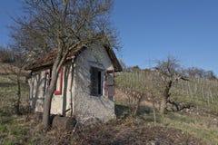 Einsame Hütte im Weinberg Lizenzfreie Stockfotografie