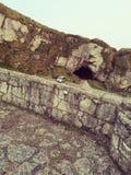 Einsame historische Ballintoy-Hafen-Höhle lizenzfreie stockfotografie