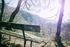 Einsame Holzbank Stockbild
