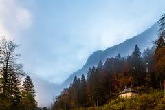 Einsame Kirche in einem Herbstwald stockfotografie
