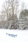Einsame schneebedeckte Bank Lizenzfreies Stockbild
