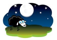 Einsame schwarze Schafe Stockfotografie