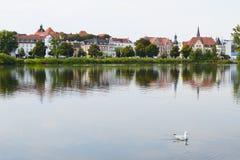 Einsame Seemöwe, die auf einen Hintergrund von Schwerin, Deutschland schwimmt Lizenzfreies Stockbild