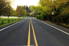 Einsame Straße Lizenzfreies Stockfoto