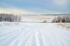 Einsame Straße auf einem schneebedeckten Feld durch das Holz lizenzfreie stockfotografie