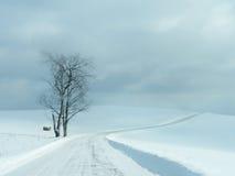 Einsame Straßen-Winter-Landschaft Stockbilder