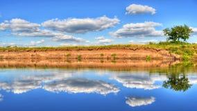 Einsamer Baum auf dem Ufer wird im Fluss reflektiert Lizenzfreie Stockfotos
