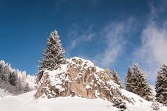 Einsamer Baum auf einem Schnee bedeckte Felsen stockfotografie