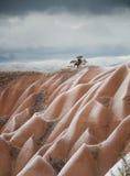 Einsamer Baum in Cappadocia Lizenzfreies Stockfoto