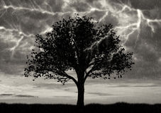Einsamer Baum im Gewitter und Blitz und Regen Lizenzfreie Stockfotografie