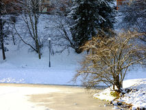 Einsamer Baum am Rand des Ufers Stockfoto