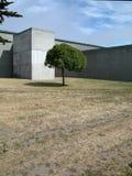 Einsamer Baum u. konkretes Gebäude stockfotos
