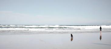 Einsamer entspannender Strand mit Hund und Frau allein stockfoto
