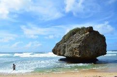 Einsamer Felsen, Bathsheba, Barbados Stockfotografie