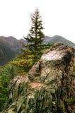 Einsamer Felsen im Bergabhang Stockfoto