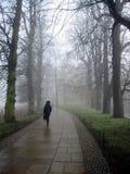 Einsamer Fußgänger an einem nebelhaften Tag Lizenzfreie Stockfotografie