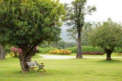 Einsamer Holzstuhl im schönen Park Schöner Garten Stockbild