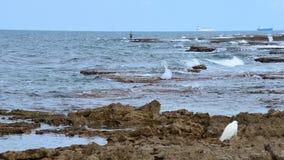 Einsamer Kranvogel und einsamer Fischer lizenzfreies stockbild