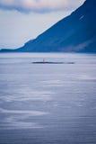 Einsamer Leuchtturm im Meer stockfotografie
