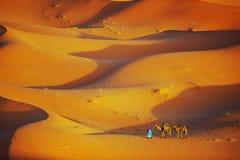 Einsamer Mann und Kamel in Sahara Desert Lizenzfreies Stockfoto
