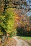 Einsamer Pfad im Herbst lizenzfreie stockbilder