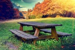 Einsamer Picknickplatz im Herbstwald Stockbild