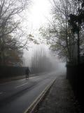Einsamer Radfahrer an einem nebelhaften Tag Lizenzfreie Stockbilder