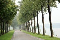 Einsamer Radfahrer und Kanal Stockfoto