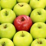 Einsamer roter Apfel Lizenzfreie Stockfotografie