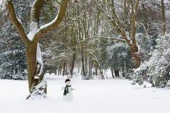 Einsamer Schneemann Stockfoto