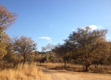 Einsamer Schotterweg in Bush in Matobo-Hügeln, Simbabwe lizenzfreie stockfotos