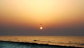 Einsamer Sonnenaufgang Stockfotos