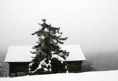 Einsamer Stall abgedeckt mit Schnee lizenzfreies stockbild