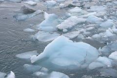 Einsamer Vogel, der auf einem Eisblock an der Jokulsarlon-Gletscher-Lagune, Island sitzt stockbild
