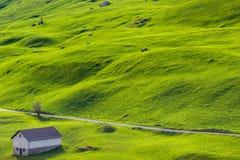 Einsames Haus am grünen Hügel Stockbild
