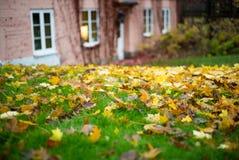 Einsames Haus im Herbstpark stockfoto