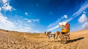 Einsames Pferd mit Wagen stockbilder