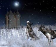 Einsames Schloss im Winter-Mondschein Stockbild