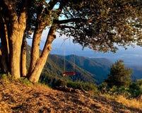 Einsames Schwingen auf der Bergspitze Stockbild