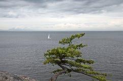 Einsames Segelboot ist im Ozean im wolkigen Wetter lizenzfreie stockbilder