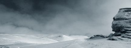 Einsames Sfinx Stockbild