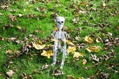 Einsames Skeleton Sitzen im Herbst - Halloween stockfotografie
