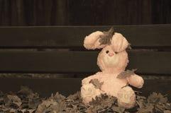 Einsames vergessenes verlassenes Teddybärspielzeughäschen saß auf einer Holzbank, die mit Herbstlaub bedeckt wurde Einsames verge lizenzfreies stockbild