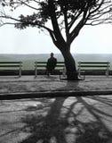 Einsamkeit Stockbilder