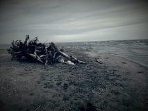 einsamkeit stockfotos